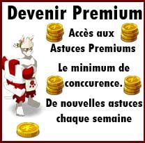 Premium 12