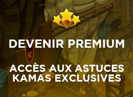 Premium 35
